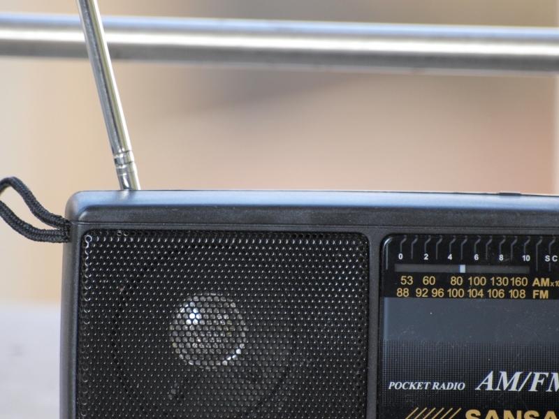 Radiosender beendet Kooperation mit Xavier Naidoo